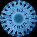 thumb_diatom.png