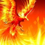 Phoenix_Fire_Magic_Phoenix_Manifestation.jpg