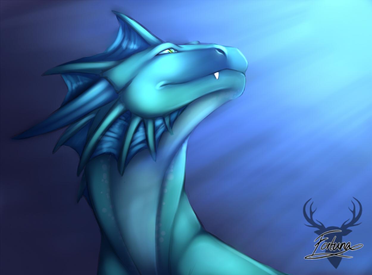 1371845648_fortuna_dragonjml.jpg